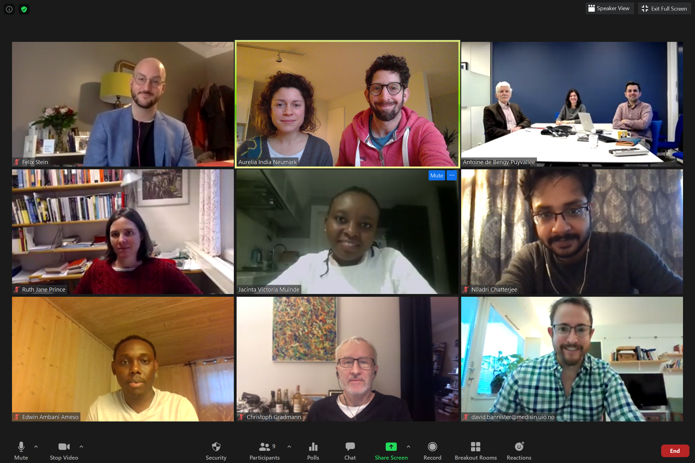 The Global Health Politics group meeting via Zoom