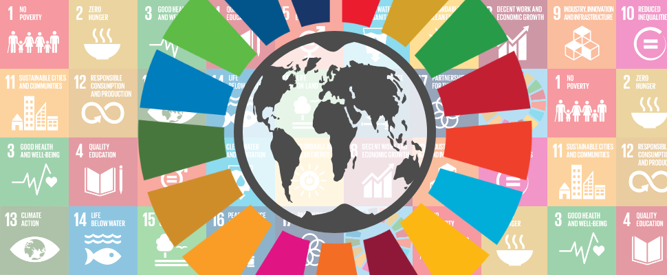 Achieving the SDGs: Global goals and national interests