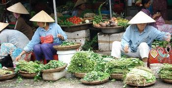 vietnam-vegetables